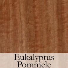 Eukalyptus Pommele