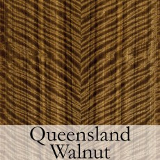 Queensland Walnut