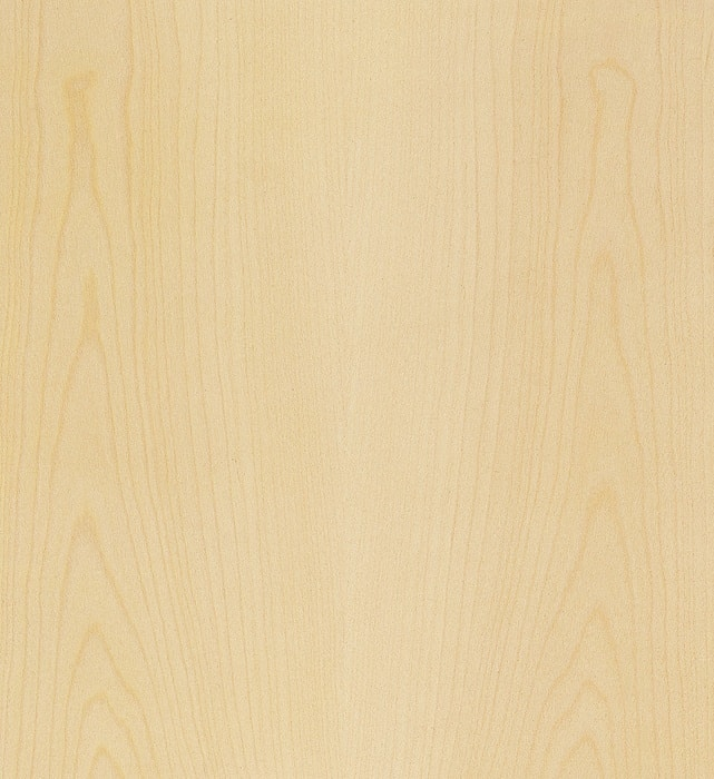 Plain Sycamore » GERBER Humidor veneer