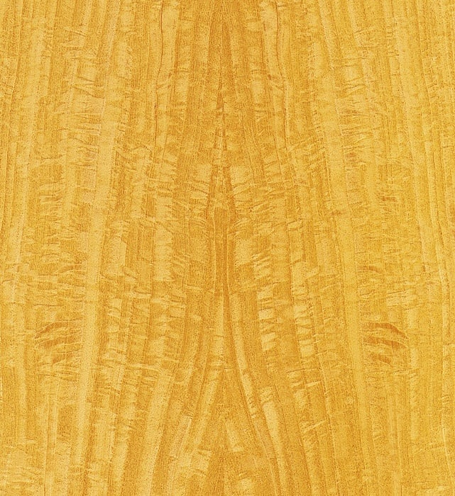 Satinwood » GERBER Humidor veneer